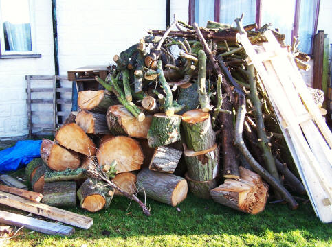 Logs from our coppice woodland